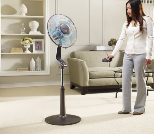 10 Best Pedestal Fans In India For Cool Air Best Sellers
